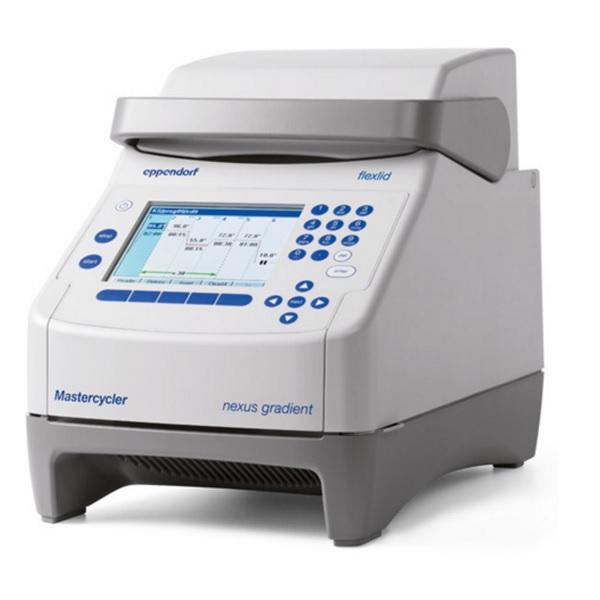 Gradient PCR 96 wells